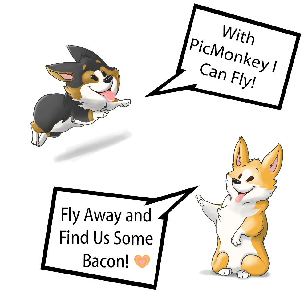 Corgilcious PicMonkey